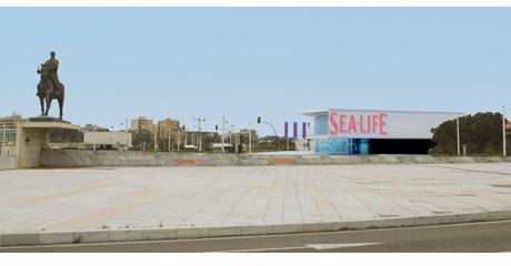 sealife-porto-sea-life